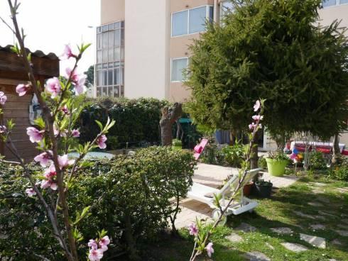 Grand Studio avec Jardin,Viager occupé,Le cannet,06110,Alpes Maritime.