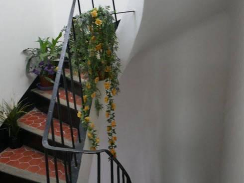 Appartement,f2,Toulon ,Viager Occupé Dame de 83 ans.