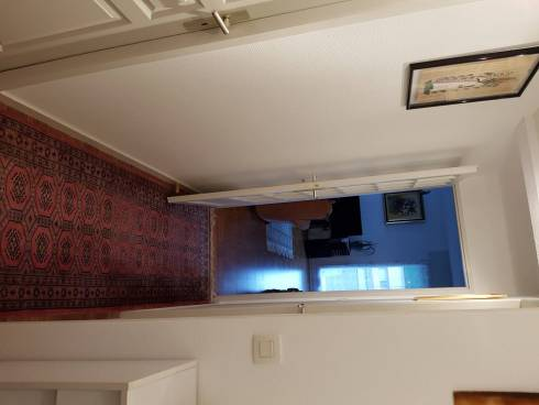 PAU appartement type 3/4 - Viager occupé
