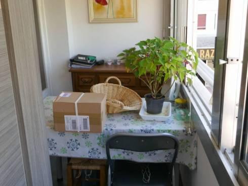 Appartement,f2,Hyeres,Proche plage Ayguade,Mr de 75 ans,Viager Occupé