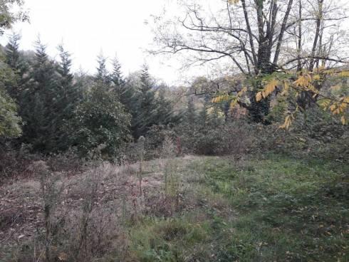 Sainte-Foy-les-Lyon, Chaponost, terrain à bâtir